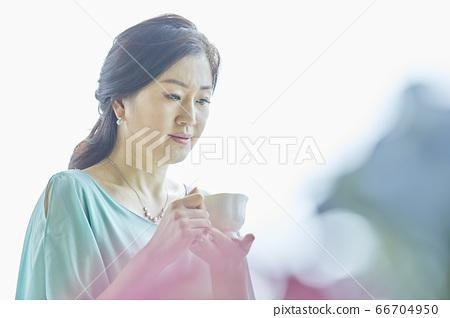 중년,커피,집,카페 66704950