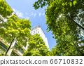 看摩天大樓的辦公室鎮的風景 66710832