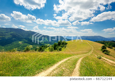 path through the meadow in mountains. sunny summer 66712144