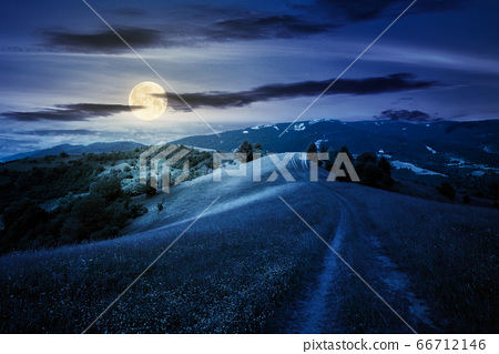 path through the mountain meadow at night. 66712146