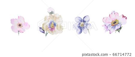 色彩豐富的水彩花素材組合和設計元素 66714772