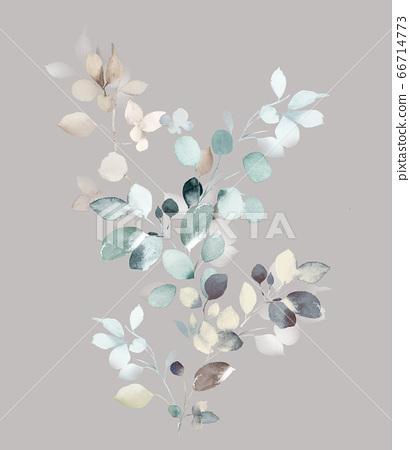 色彩豐富的水彩花素材組合和設計元素 66714773