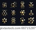Golden molecules logotypes 66715287