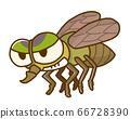 阿布昆蟲害蟲 66728390