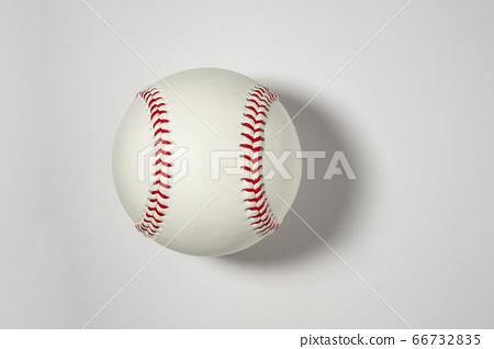 Baseball Ball 66732835