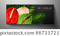 Gift certificate, Voucher with tropical exotic realistic asian flower bouquet - Anthurium andraeanum (flamingo flower) and green palm branch. Blank black background template useful for wedding design, 66733721