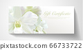 Gift certificate, Voucher with realistic white orchid flower bouquet. Blank background template useful for wedding design, invitation card or coupon 66733722