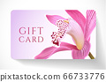 Gift card with beautiful realistic orchid pink flower isolated on clean background. Template useful for wedding design, women shopping card (loyalty card) 66733776