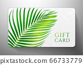 Gift card with beautiful realistic palm branch  isolated on white background. Template useful for wedding design, women shopping card (loyalty card) 66733779