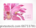 Gift card with beautiful realistic orchid pink flower isolated on clean background. Template useful for wedding design, women shopping card (loyalty card) 66733781
