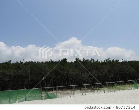夏季白r雲和藍天 66737214