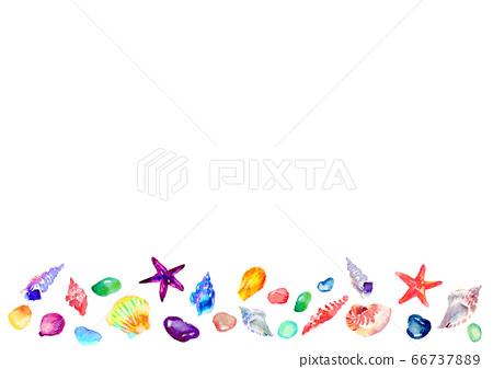 貝殼插畫水彩手繪夏天 66737889