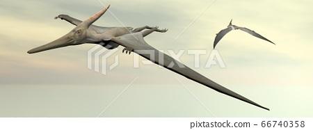 Pteranodons flying - 3D render 66740358