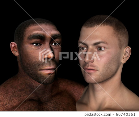 Homo erectus and sapiens comparison - 3D render 66740361