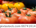 Bunch of fresh red and yellow tomatoes in grocery. Close-up of organic healthful food in supermarket. Assortment, healthful food, healthy eating. 66741614