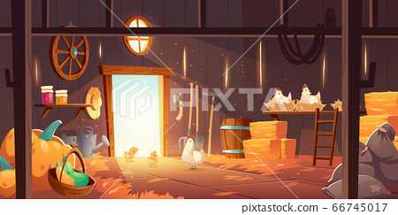 Barn on farm with chickens, straw and hay 66745017