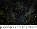 峽谷螢火蟲 66760470