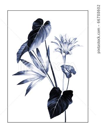 色彩豐富的水彩花素材組合和設計元素 66788602