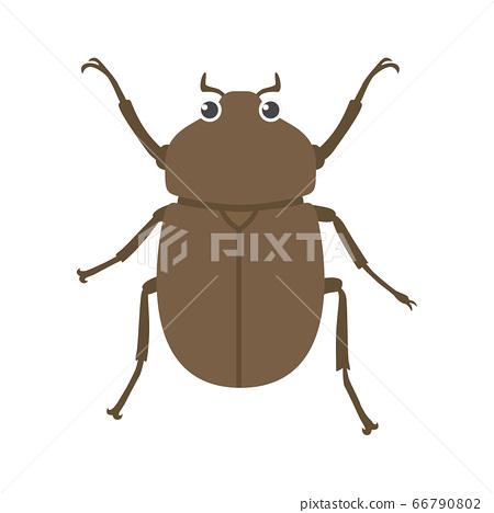 一隻母甲蟲的插圖 66790802