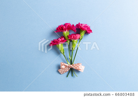 Pink spray carnation flowers bouquet on blue background. Floral composition, flat lay, top view, copy space 66803488