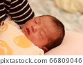 新生兒 66809046