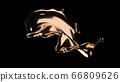 Gold Splash 66809626