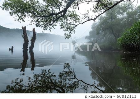 樂活公園與水霧 66812113
