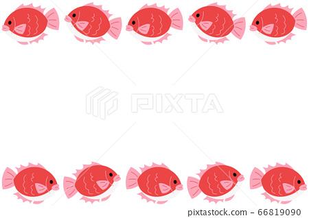 海鯛框架矩形紅色 66819090