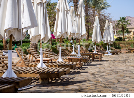 row of wooden shizlongov with folded white umbrellas with plants and palm trees 66819205