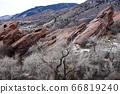 紅色岩石火花科羅拉多 66819240