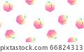 Hand drawn peach fruit seamless pattern 66824313