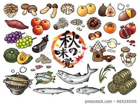 秋天的味道和食慾下降手繪矢量插圖集 66826088
