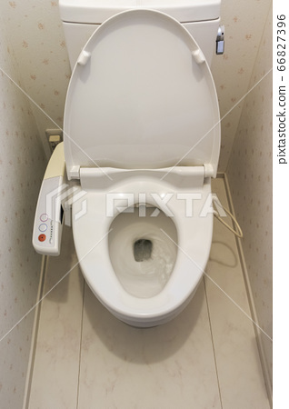 Toilet seat in flush toilet 66827396