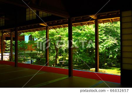 Scenery of Enkoji Temple in Sakyo Ward, Kyoto, Japanese garden in the precincts of Enkoji Temple [June] 66832657