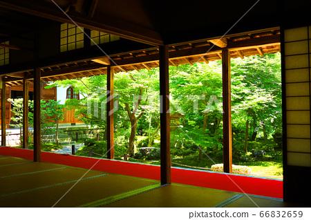 Scenery of Enkoji Temple in Sakyo Ward, Kyoto, Japanese garden in the precincts of Enkoji Temple [June] 66832659
