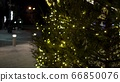 Magic yellow blurry lights of garlands on Christmas trees at fair 66850076