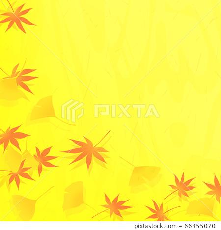 日本模式的楓樹和銀杏黃色框背景(秋天圖像) 66855070