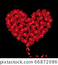 Heart red rose petals on Valentine day. scarlet Heart in love with roses. 66872086