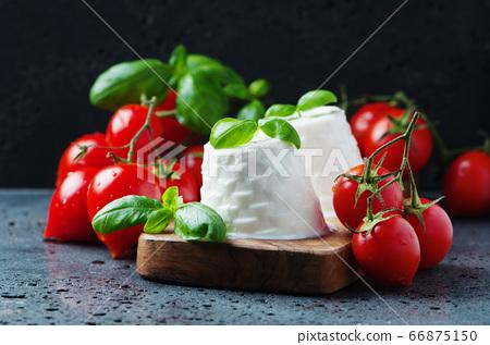 Fresh ricotta with tomato and basil 66875150
