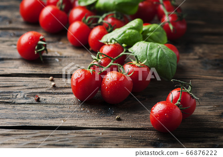 Fresh sweet tomato and green basil on the vintage 66876222