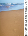 Footprints in sand at beach leading towards sea 66880567