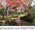 도쿄도 오타구 蘇峰 공원 66897684
