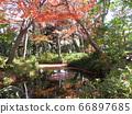 도쿄도 오타구 蘇峰 공원 66897685