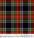 vector illustration of seamless blue and white tartan background 66899141