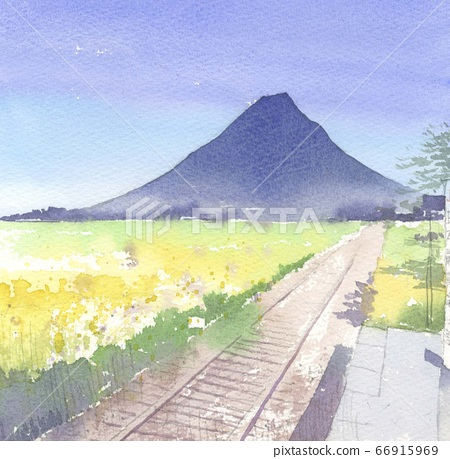 Watercolor painting Kaimondake 66915969