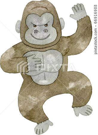大猩猩鼓 66916988