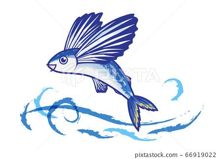 飛魚 66919022