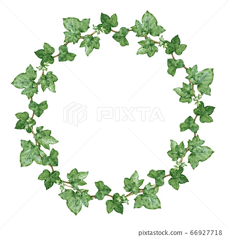 Ivy green wreath watercolor illustration. 66927718