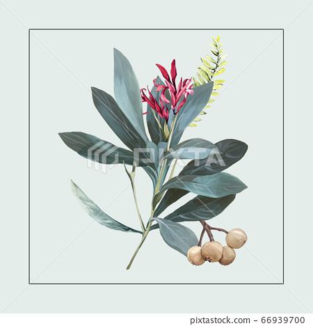 色彩豐富的花卉素材組合和設計元素 66939700
