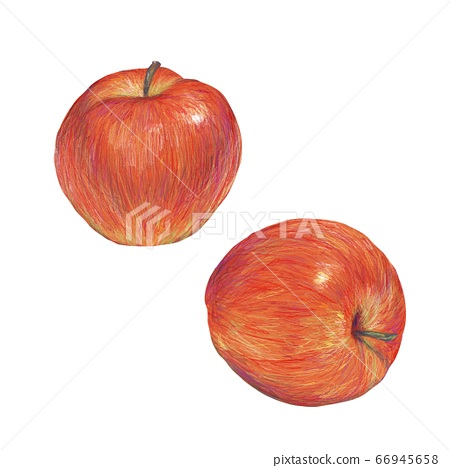 Apple 66945658